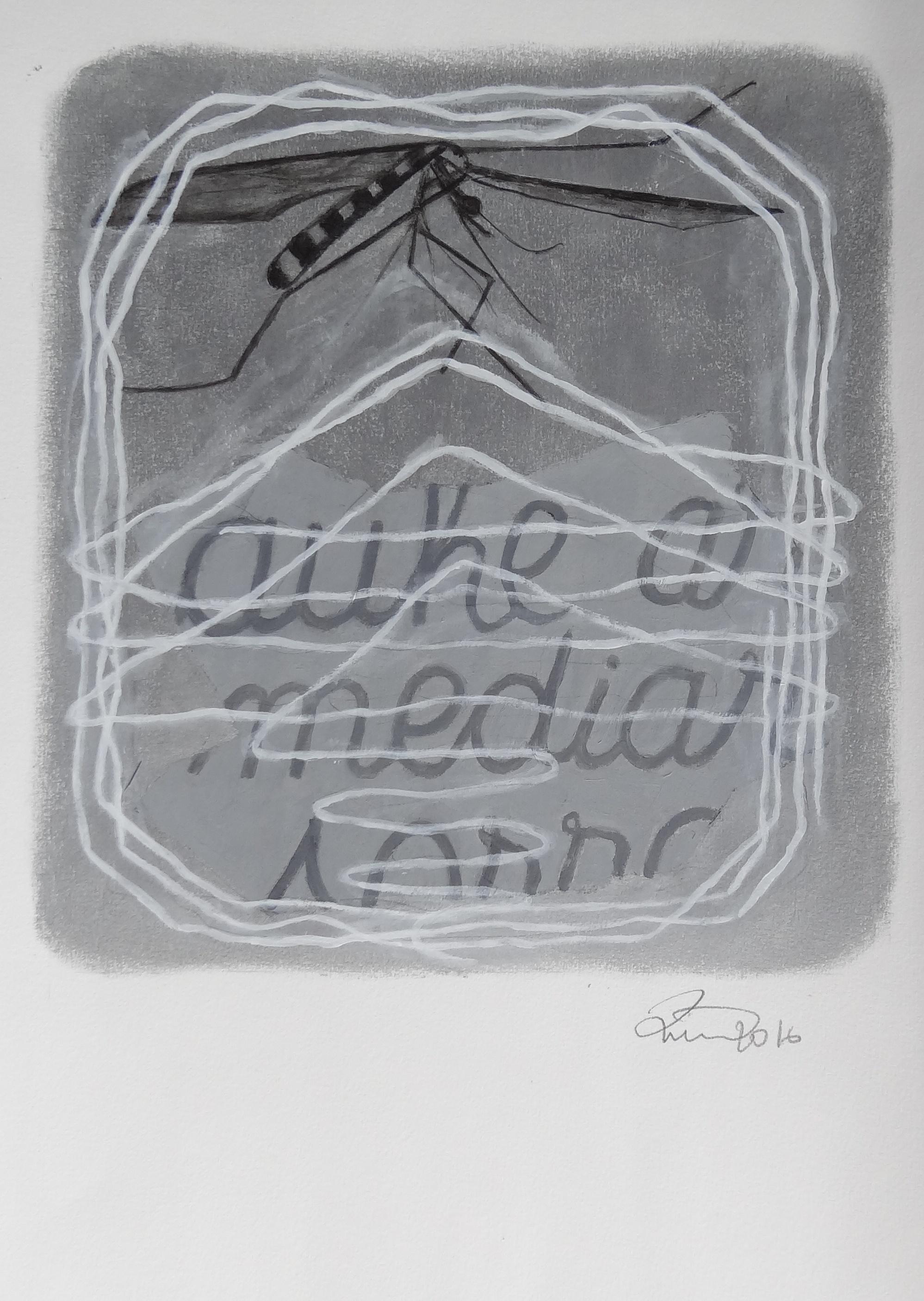 ZANONI-INSECTE-ET-ECRITURE-2.jpg